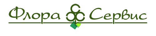 Логотип Сайт