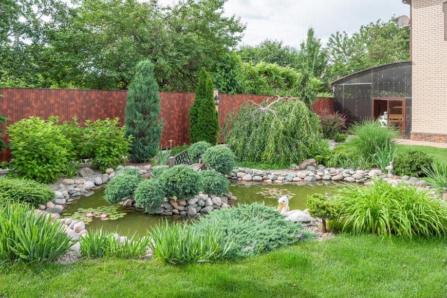 Вариант садового пруда в Ростове
